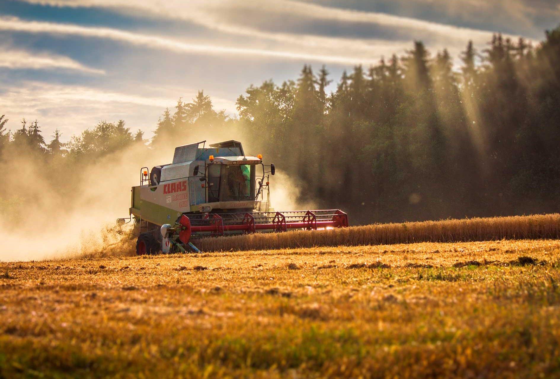 Termografering landbrug i Vejle, Kolding, Fredericia - Trekantområdet